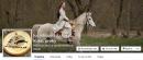 Aktuality sledujte na našem FB profilu